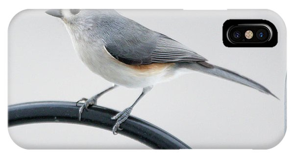 IPhone Case featuring the photograph Profile Of A Tufted Titmouse by Darryl Hendricks