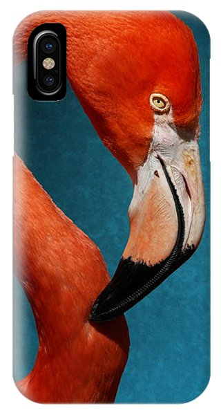 Profile Of An American Flamingo IPhone Case