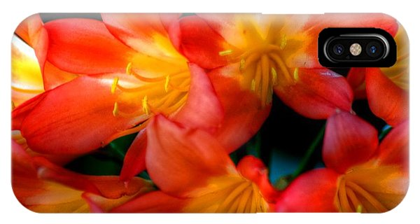 Profusion Of Red IPhone Case