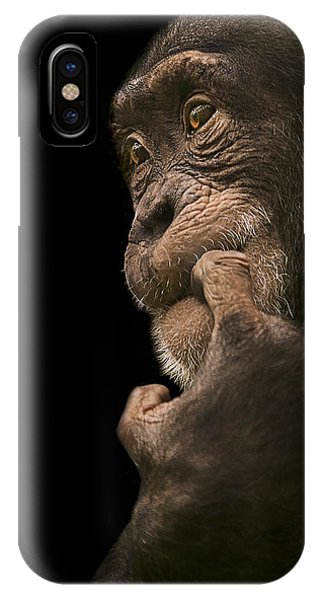 Chimpanzee iPhone Case - Promiscuous Girl by Paul Neville
