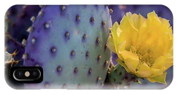 Protected Beauty IPhone Case