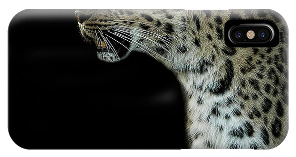 Leopard iPhone Case - Prowl by Paul Neville