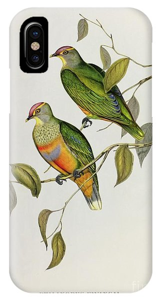 Audubon iPhone X Case - Ptilinopus Ewingii by John Gould