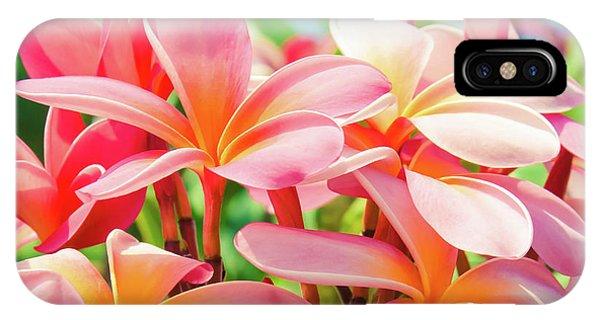 Hawaii iPhone Case - Pua Melia Ke Aloha Maui by Sharon Mau