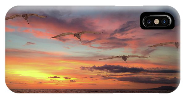 Puerto Vallarta Pelicans IPhone Case