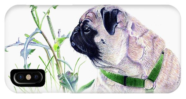 Pug And Nature IPhone Case
