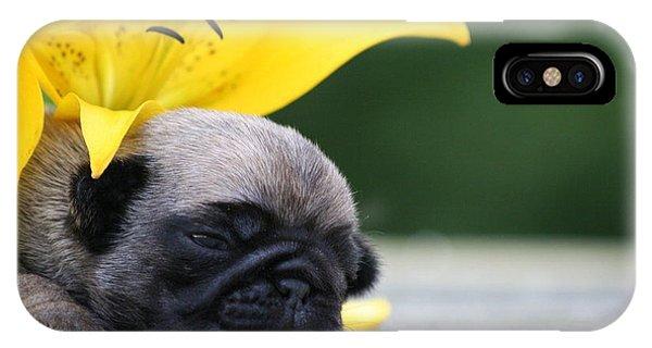 Puggy Face Bouqet IPhone Case