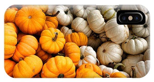 Cultivar iPhone Case - Pumpkin And Pumpkin by Olivier Le Queinec