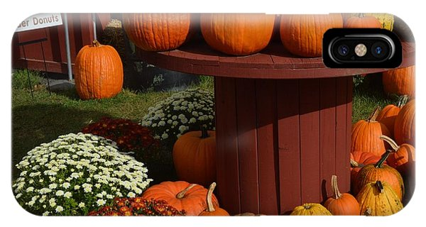 Pumpkin Display IPhone Case