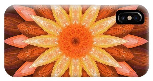 Pumpkin Mandala -  IPhone Case