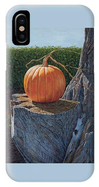 Pumpkin On A Dead Willow IPhone Case