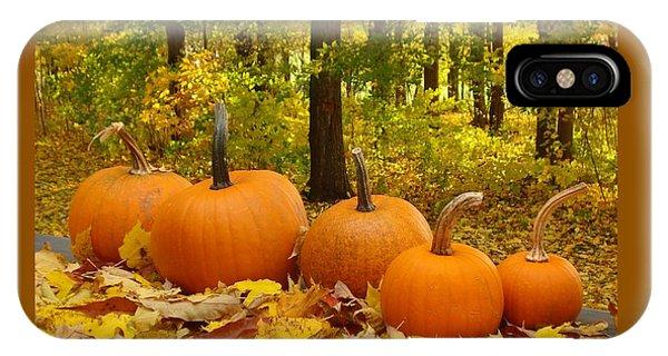 Pumpkins And Woods-iii IPhone Case