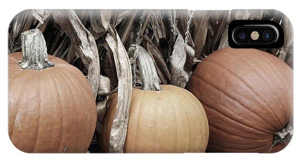 Pumpkins For Sale IPhone Case