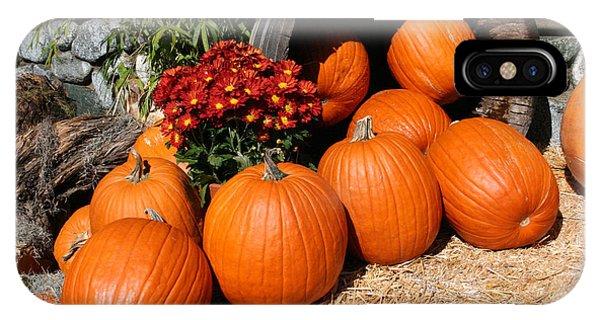 Pumpkin iPhone Case - Pumpkins- Photograph By Linda Woods by Linda Woods