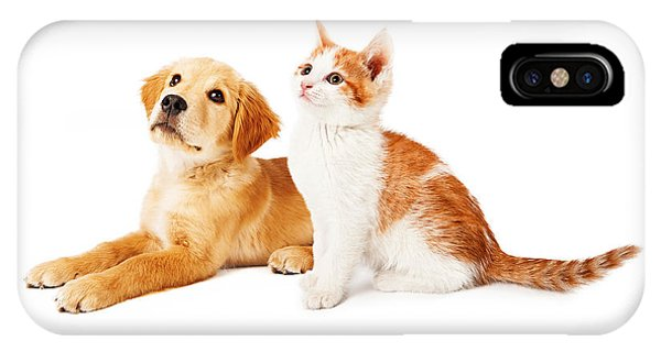 Puppy And Kitten Looking To Side IPhone Case