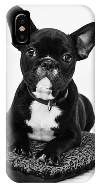 Puppy - Monochrome 5 IPhone Case