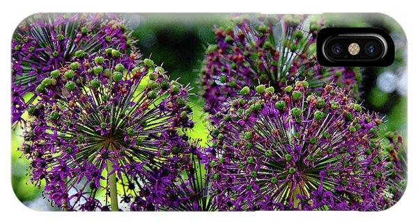 Purple Allium Hollandicum IPhone Case