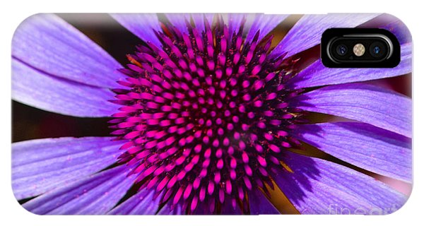 Purple And Pink Daisy IPhone Case