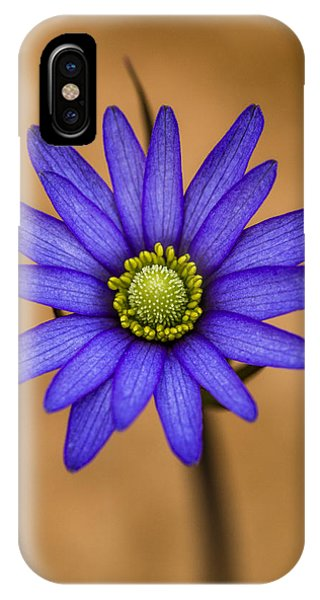 Purple Anemone IPhone Case
