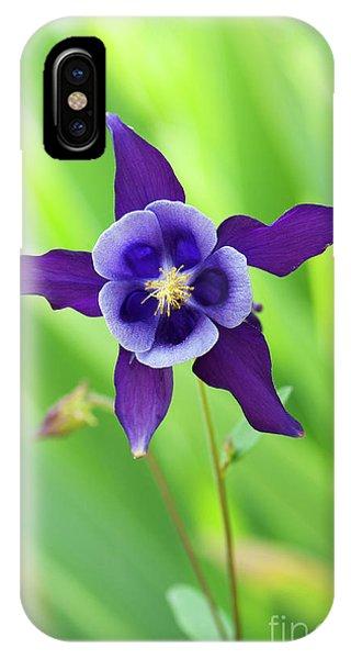 Aquilegia iPhone Case - Purple Aquilegia Flower by Tim Gainey