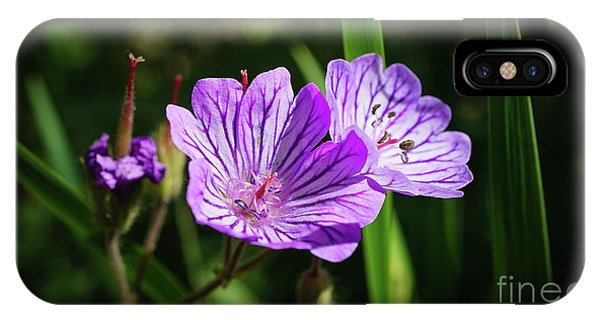 Purple Attraction IPhone Case