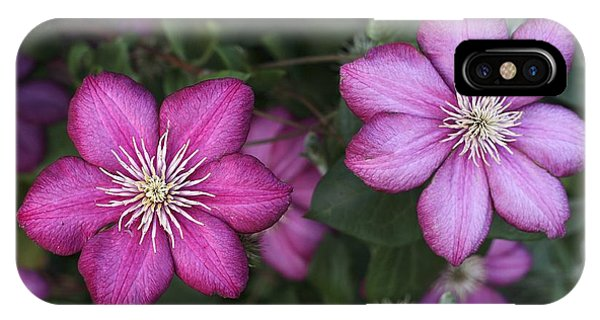 iPhone Case - Purple Clematis by William Kuta