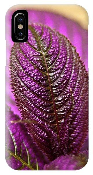 Purple Coleus IPhone Case