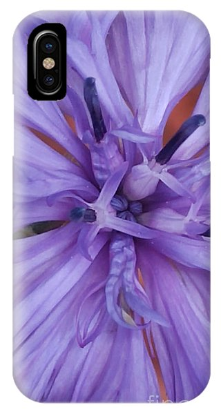 Purple Colorado Wildflower In Macro IPhone Case