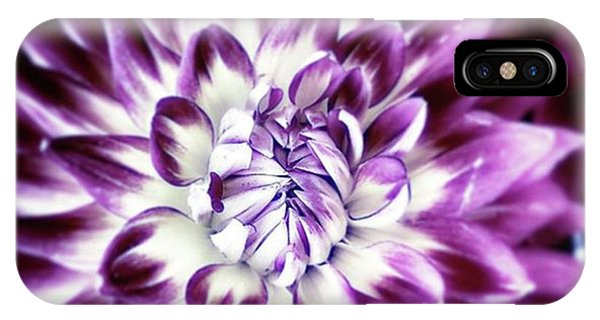 Purple Dahlia. A Color Variation Of The Phone Case by Mr Photojimsf