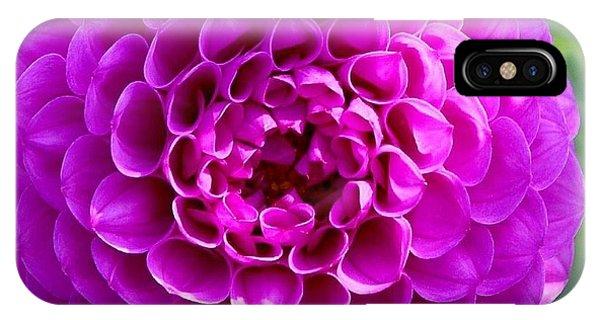 Purple Dahlia IPhone Case