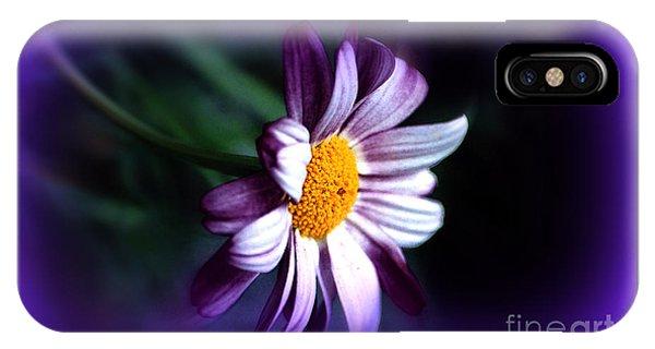 Purple Daisy Flower IPhone Case