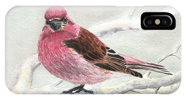 Purple Finch IPhone Case