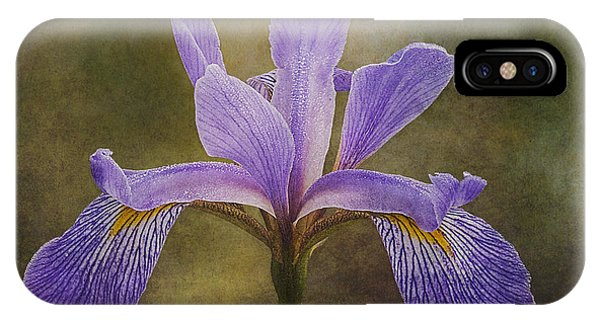 IPhone Case featuring the photograph Purple Flag Iris by Patti Deters