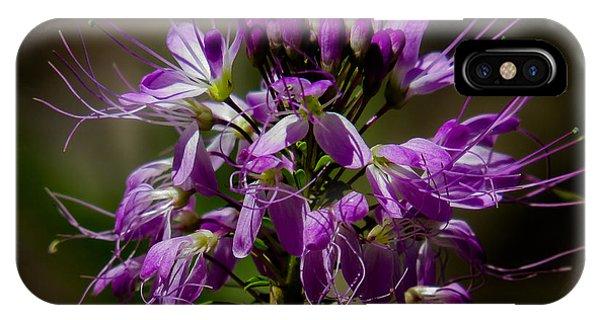 Purple Flower 1 IPhone Case