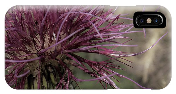 Purple Flower 2 IPhone Case