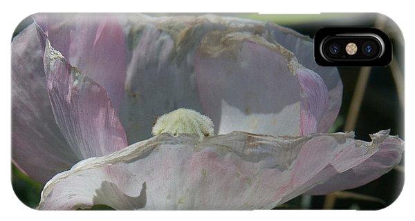 Purple Flower 4 IPhone Case