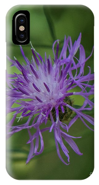 Purple Flower 8 IPhone Case