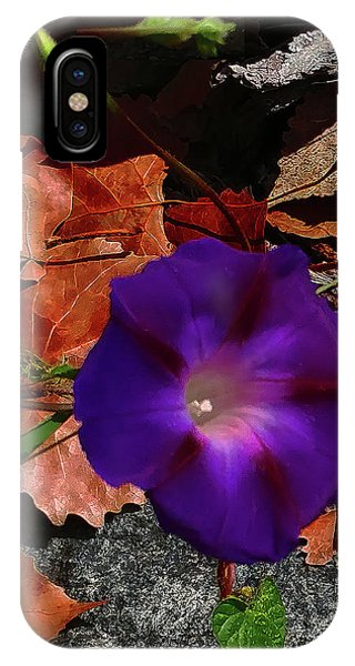 IPhone Case featuring the photograph Purple Flower Autumn Leaves by Roger Bester