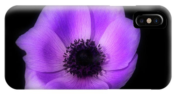 Purple Flower Head IPhone Case