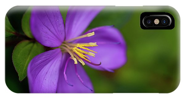Purple Flower Macro IPhone Case