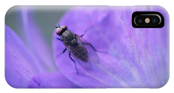 Purple Fly IPhone Case