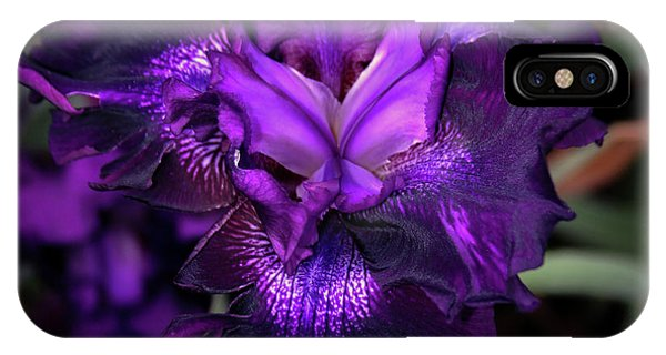 Purple Iris 5994 H_2 IPhone Case