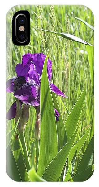 Purple Iris IPhone Case