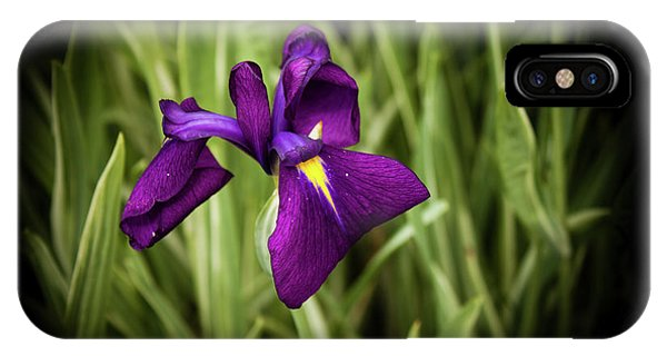 Purple Japanese Iris IPhone Case