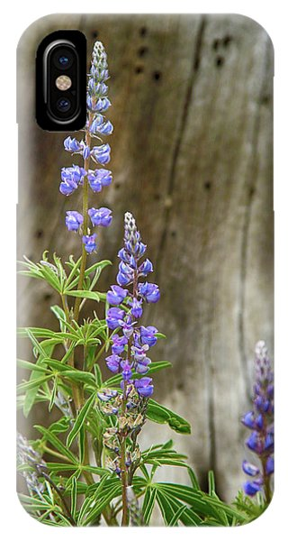 Purple Lupine IPhone Case