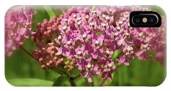 Purple Milkweed IPhone Case