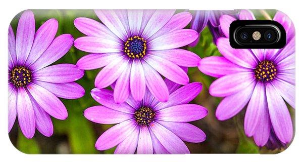 Fall Flowers iPhone Case - Purple Pals by Az Jackson