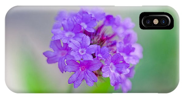 Petals iPhone Case - Purple Petals by Az Jackson