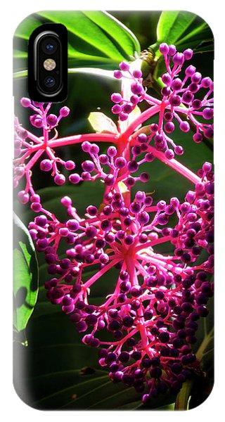 Purple Plant IPhone Case