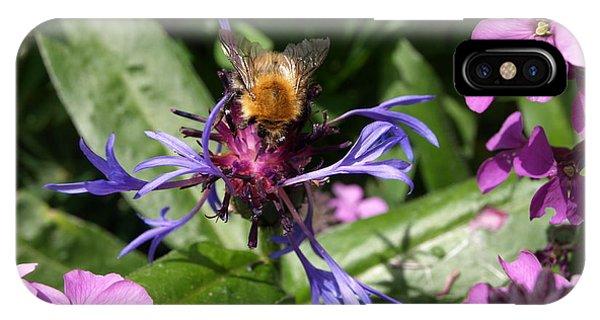 Purple Pollination IPhone Case